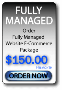 Fully Managed E-Commerce Website
