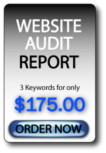 Order Website Audit Report